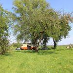 Tijnje woonboerderij 2